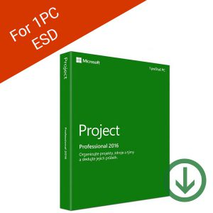 Microsoft Project Professional Payless PC